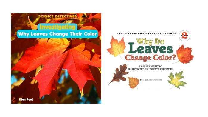 Leaf color transition during fall season – Let your stars S.P.A.R.K.L.E