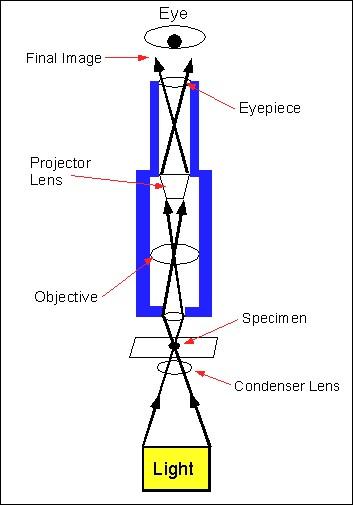 LightDiagram